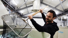 BioMar incrementa la producción de alimento para alevines y dietas RAS en Dinamarca
