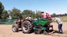 Argentina Buscan desarrollar el cultivo de papas en zonas cordilleranas de San Juan y San Rafael