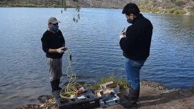 Estudios biológicos para mejorar la sustentabilidad ictícola en Entre Ríos