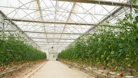 Crean el Banco para Abastecimiento de Insumos Agropecuarios en la provincia de Buenos Aires