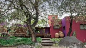 Una finca que ofrece un jardín botánico, una bodega y una gigantesca colección de cactus
