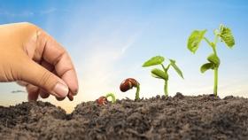 Estos son los grandes desafíos de la agricultura para el futuro cercano