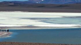 Destinos y empresas argentinas recibirán el sello internacional Viajes Seguros