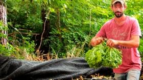 El Ministerio del Agro de Misiones presentó una línea de créditos para potenciar la competitividad de PyMES ligadas a los agroalimentos