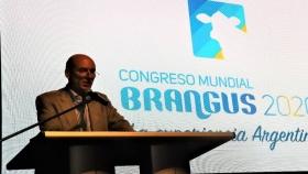 Nueva fecha para el Congreso Mundial Brangus