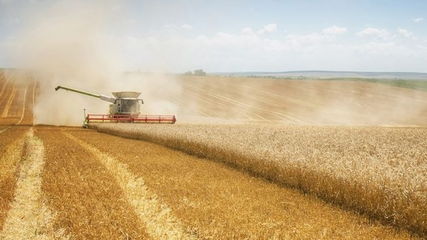 Buen semestre para las exportaciones del agro en Córdoba