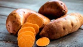 Boniato o batata zanahoria, el cultivo típico de Uruguay que es cada vez más tendencia en Argentina