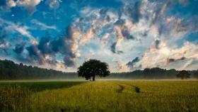 Crece la tendencia de irse al campo a vivir en todo el territorio nacional