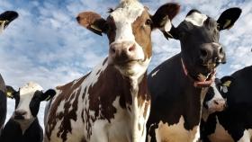 Agricultura y el Banco Nación lanzan créditos por $10 mil millones para el