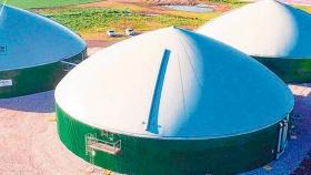El negocio de la biomasa, sustentable y rendidor