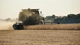 La cosecha de soja se encuentra a punto de finalizar con un descenso en el rinde