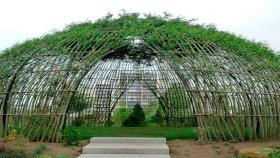 La tendencia de la semana: arquitectura vegetal