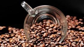El café en tu jardín