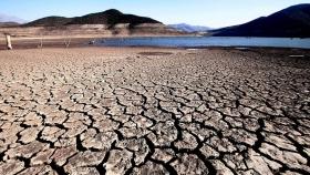 La sequía en Chile que podría traer plagas desconocidas hasta ahora