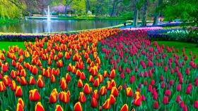 Soplo de primavera en los jardines más bonitos de Europa