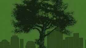 Docente de la #UASLP crea guía de arbolado urbano de acceso libre
