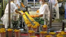 Motores de la economía: una radiografía del empleo generado por la agroindustria