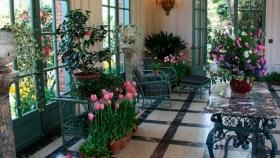 Jardines internos: ¿cómo crear un espacio verde dentro de casa?