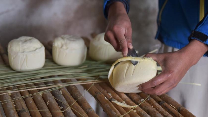 Agricultura potencia la producción local de alimentos en Tucumán y Salta