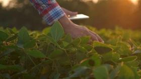 ¿Cómo demuestro que hago una agricultura responsable? Una aplicación buscar facilitar la trazabilidad de cada lote para sacar mejor provecho en el mercado