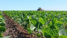 Futuros agropecuarios como herramienta clave en tiempos de volatilidad
