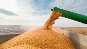 Cayó casi 9% el ingreso de dólares por las liquidaciones del agro en enero