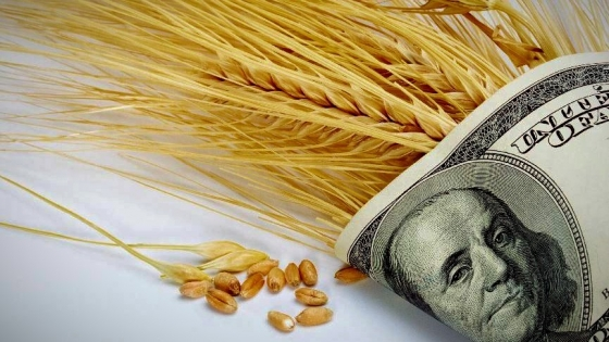 Retenciones anticipadas récord gracias al trigo