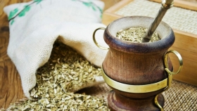 Buscan elaborar jugos saludables a partir de la yerba mate