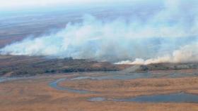 Lanzan un plan de forestación en las islas como respuesta a los incendios