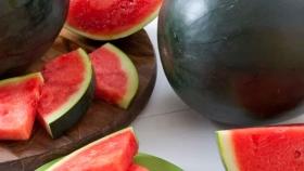 Sandía negra black pearl: dulce y sin semillas