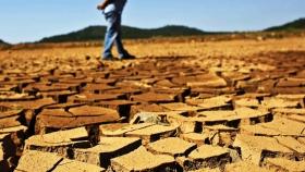 La cosecha brasileña se enfrenta al clima