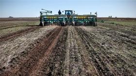 En plena siembra de trigo, fuertes aumentos en los precios de fertilizantes