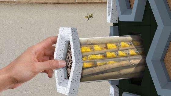 Un sistema modular australiano permite resguardar abejas en el hogar y frenar su extinción