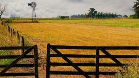 La zona núcleo aportó casi 3 millones de toneladas más de trigo que el año pasado