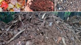 Para los amantes de las plantas: Cómo preparar el sustrato y fertilizantes para nuestro Jardín