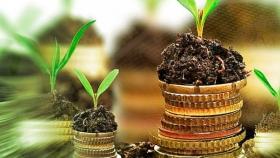 Impacto millonario por cultivos transgénicos