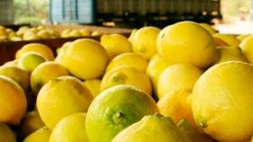 Argentina: granero y también supermercado del mundo