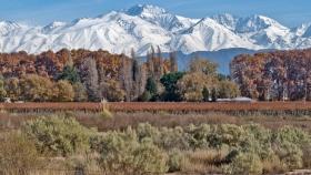 Seis propuestas imperdibles en Mendoza