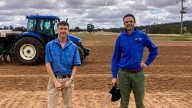 ¿Podrían los cultivos nativos, el pasto canguro, convertirse en un ingrediente habitual del pan y ayudar a los agricultores a regenerar la tierra?