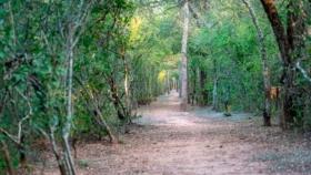 Avanza la elaboración de planes de gestión para los parques provinciales