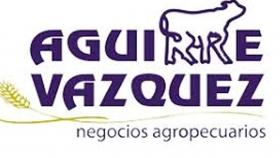 Aguirre Vazquez SA