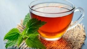 Beneficios del té de flor de calabaza