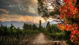 Kaikén Wines from Argentina: vinos de excelencia que expresan las características de nuestra tierra