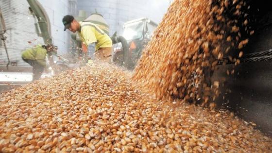 Alimentos: la oportunidad menos pensada para Argentina