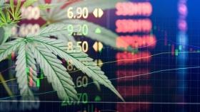 Inversiones en empresas de cannabis: Lo que tienes que saber para este 2021