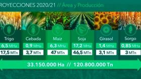 La Bolsa de Cereales analizó el complejo escenario comercial de cara a la campaña 2020-21