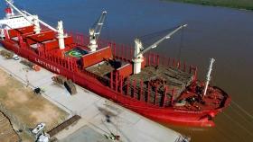 Desde Entre Ríos saldrá la primera exportación de rollizos de madera hacia la India