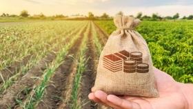 Mayor participación estatal en la renta agrícola