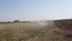 El trabajo público privado logró reducir una manga de langostas en Santiago del Estero