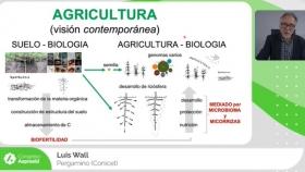 Reconstruir la física y la fisiología del suelo a través de su biología (con agricultura de procesos)
